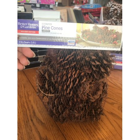Large Cinnamon Scented Pinecones Party Living Room Decor Ships N 24h - Pinecone Decor