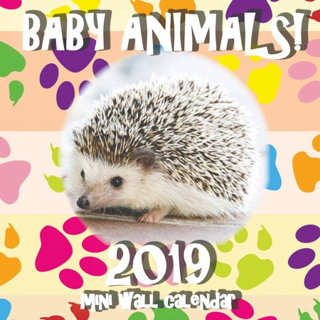 Baby Animals! 2019 Mini Wall Calendar (Paperback)