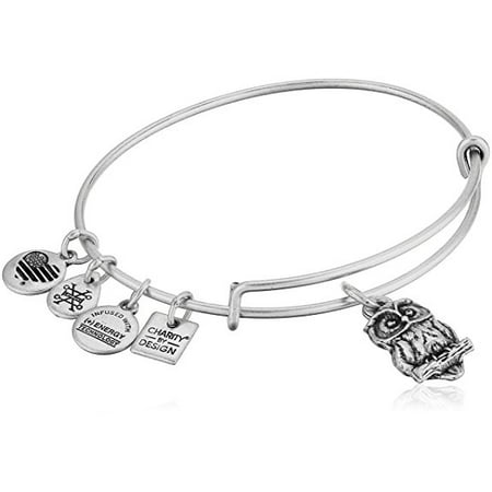 Alex and Ani Charity By Design - Owl Charm Bangle Bracelet - Rafaelian Silver - Expandable - CBD18OWL01RS Ambers Sterling Silver Bangles