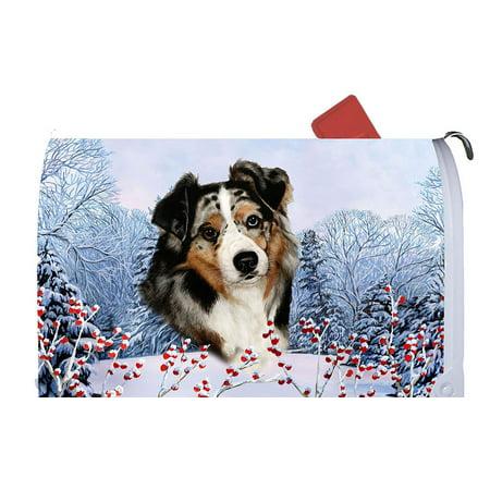 Australian Shepherd Blue Merle - Best of Breed Dog Breed Winter Berries Mail Box