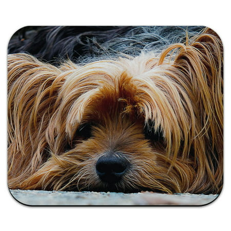 Lazy Sleepy Yorkshire Terrier Dog Mouse (Terrier Pets Mouse Pad)
