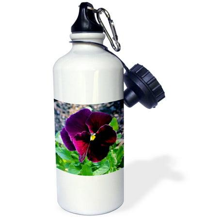 Burgundy Water (3dRose Rich deep burgundy pansy, Sports Water Bottle, 21oz )