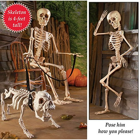 Posable Skeleton Halloween Decor](Scheletri Di Halloween)