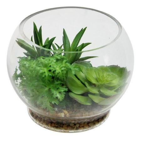 4 75 Artificial Succulent Arrangement Glass Terrarium With Pebbles