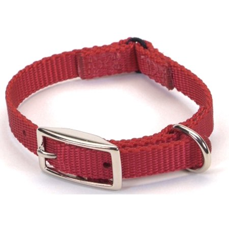 Coastal Pet Products 00301S 3/8 Inch Nylon Safety Cat Collar, 10 Inch, Red