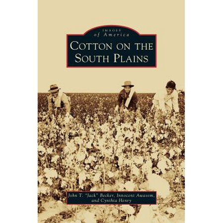 Cynthia Plain (Cotton on the South Plains)