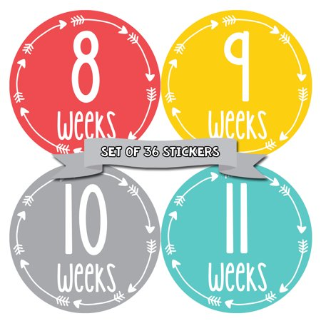 Months In Motion Pregnancy Week By Week Belly Stickers | Set of 36 Photo