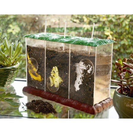 See-Through Compost Container, Learning Toys ()