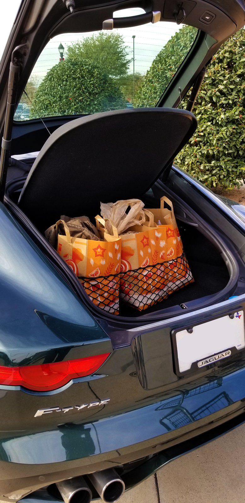 Envelope Style Trunk Cargo Net for Dodge Grand Caravan 2008-2019