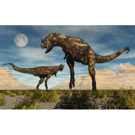 a pair of carnotaurus dinosaurs fighting over territory canvas art