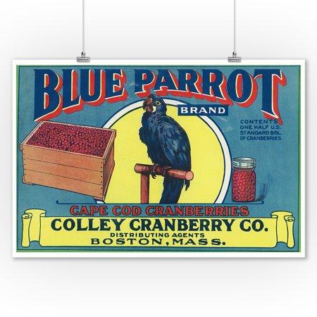 Boston, Massachusetts - Blue Parrot Brand Cape Cod Cranberry - Vintage Crate Label (9x12 Art Print, Wall Decor Travel (Cape Cod Boston Ma)