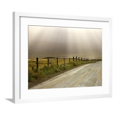 - Country Road Lit by Sunrays, California, USA Framed Print Wall Art By Don Paulson