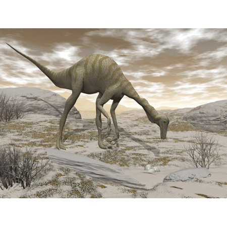 Gallimimus dinosaur discovering eggs in the desert Poster Print by Elena DuvernayStocktrek Images