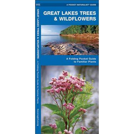 Regional Nature Guides: Great Lakes Trees & Wildflowers: A Folding Pocket Guide to Familiar Species (Other) - Lakes Regional Park Halloween