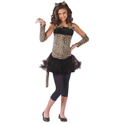 IN-MC1226MD Wild Cat Girls Halloween Costume MEDIUM By Fun Express - Halloween Express Jobs