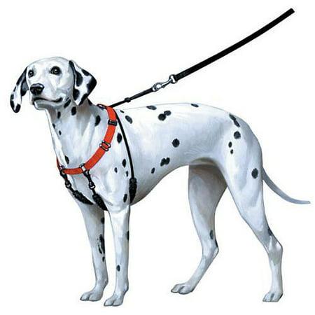 Sporn Training Halter - Sporn Pet No Pull Halter - Blue Xlarge(Size: 23 - 33 Inches)