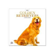 BrownTrout Golden Retrievers - Monthly square calendar - wall mount - September 2020-December 2021 - month to view - 12 in x 12 in - dated