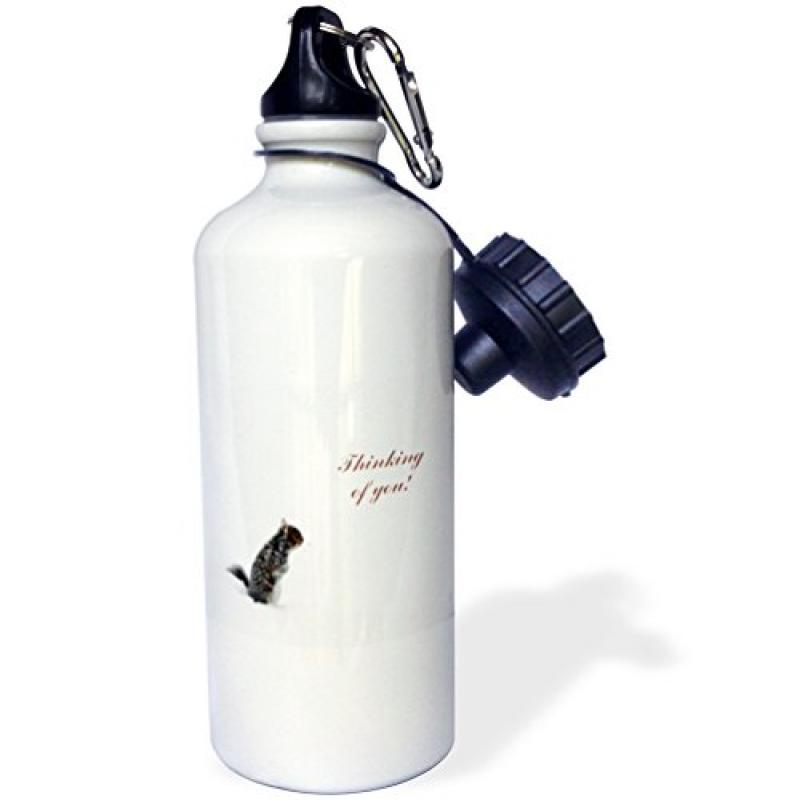 3dRose Little Squirrel on a Winters Day, Thinking of you, Sports Water Bottle, 21oz by Supplier Generic