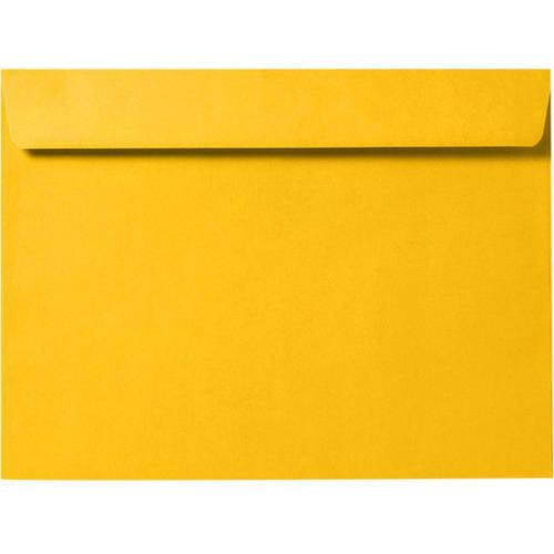 6 x 9 Booklet Envelopes 24lb. Bright White (1000 Qty.) by LUX Paper