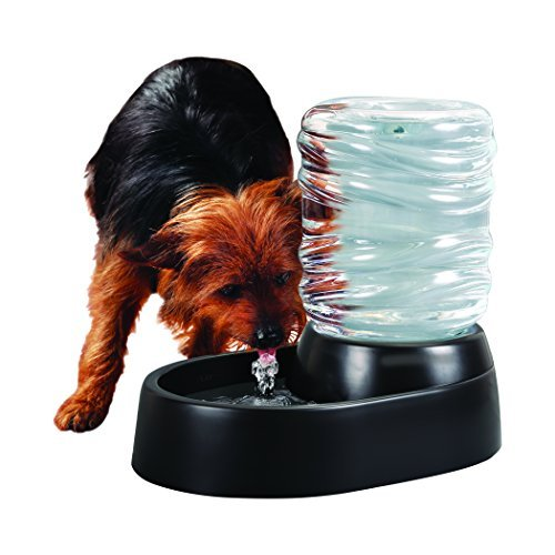 Dog and Cat Water Fountain, Black