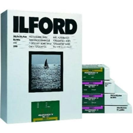 Ilford Multigrade Fiber Base Classic Glossy 8x10 100 Sheets ()
