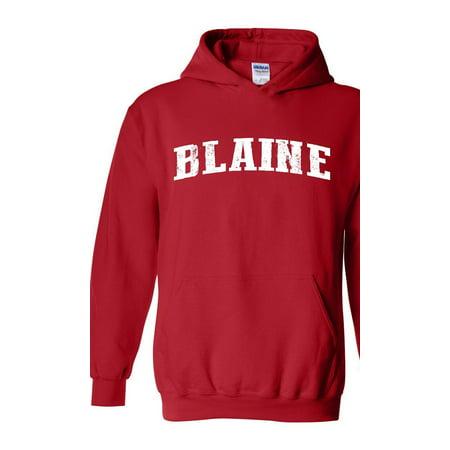 6e3303c0 Artix - Blaine Minnesota Hoodie Home of University of Minnesota and ...