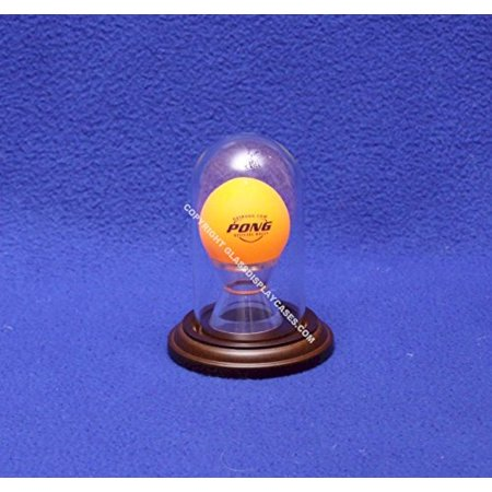 Beer Pong Ping Pong Ball Personalized Glass Display Case Trophy Award Dome - Free - Personalized Trophies