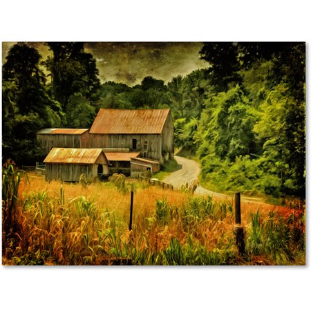"""Trademark Fine Art """"Country Road In Summer"""" Canvas Art by Lois Bryan"""