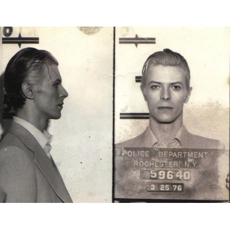 Laminated Poster David Bowie Mug Shot Glossy Poster Music Celebrity Mugshot Poster Print 24 x 36