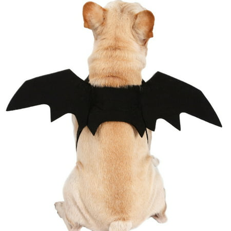 Gremlin Costume For Dog (Fysho Pet Halloween Cosplay Funny Costume for Dogs Cats Puppies Kittens Black Bat)