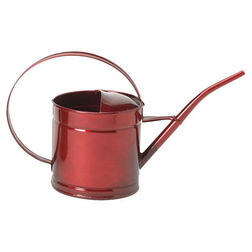 Houston International Watering Can (Set of 12) by Houstan International