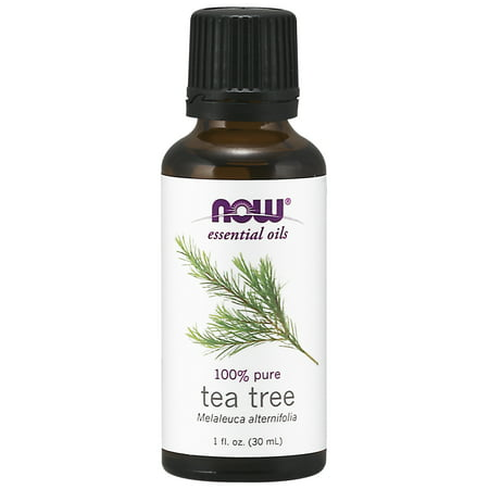 NOW Essential Oils, Tea Tree Oil, Cleansing Aromatherapy Scent, Steam Distilled, 100% Pure, Vegan, - Tea Tree Oil Shaving