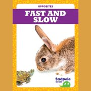 Fast and Slow - Audiobook