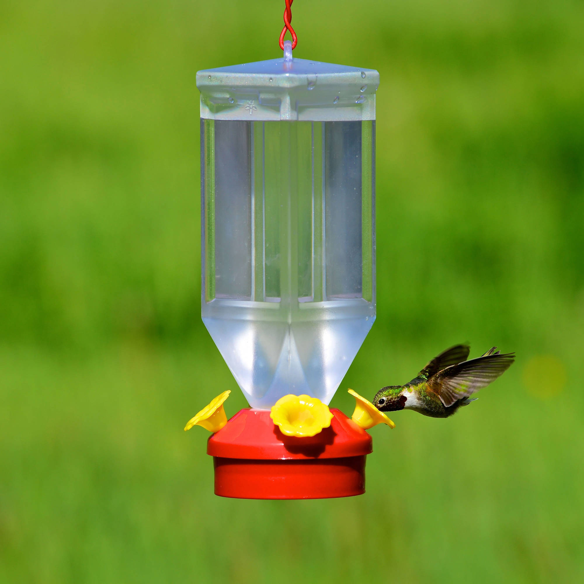 design flower feeder humingbird recycled uncommongoods hummingbird product