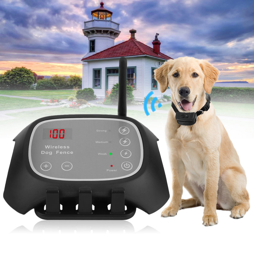 Wireless Remote Pet 1 Dog Fence Training Containment System One Collars Rechargeable Waterproof
