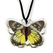 Company BTN111 Real Bug Red-Base Jezebel Butterfly Necklace