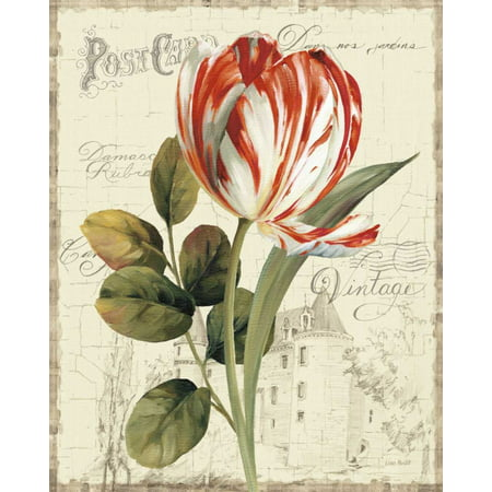 - Garden View II - Red Tulip Poster Print by Lisa Audit