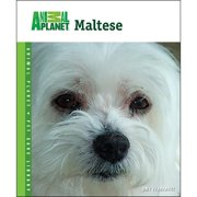 Animal Planet Maltese Book,  Malteses by TFH Publications