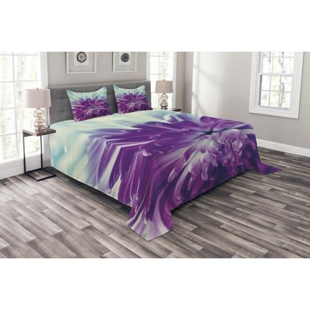 Giant Dahlia Quilt (Dahlia Bedspread Set, Violet Colored Blooming Dahlia Close-Up with Petals in Pale Sunshine Floral, Decorative Quilted Coverlet Set with Pillow Shams Included, Purple Mint Green, by Ambesonne )