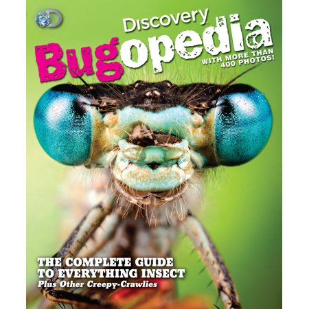 Discovery Bugopedia : The Complete Guide to Everything Insect Plus Other - History Of Halloween Discovery Channel