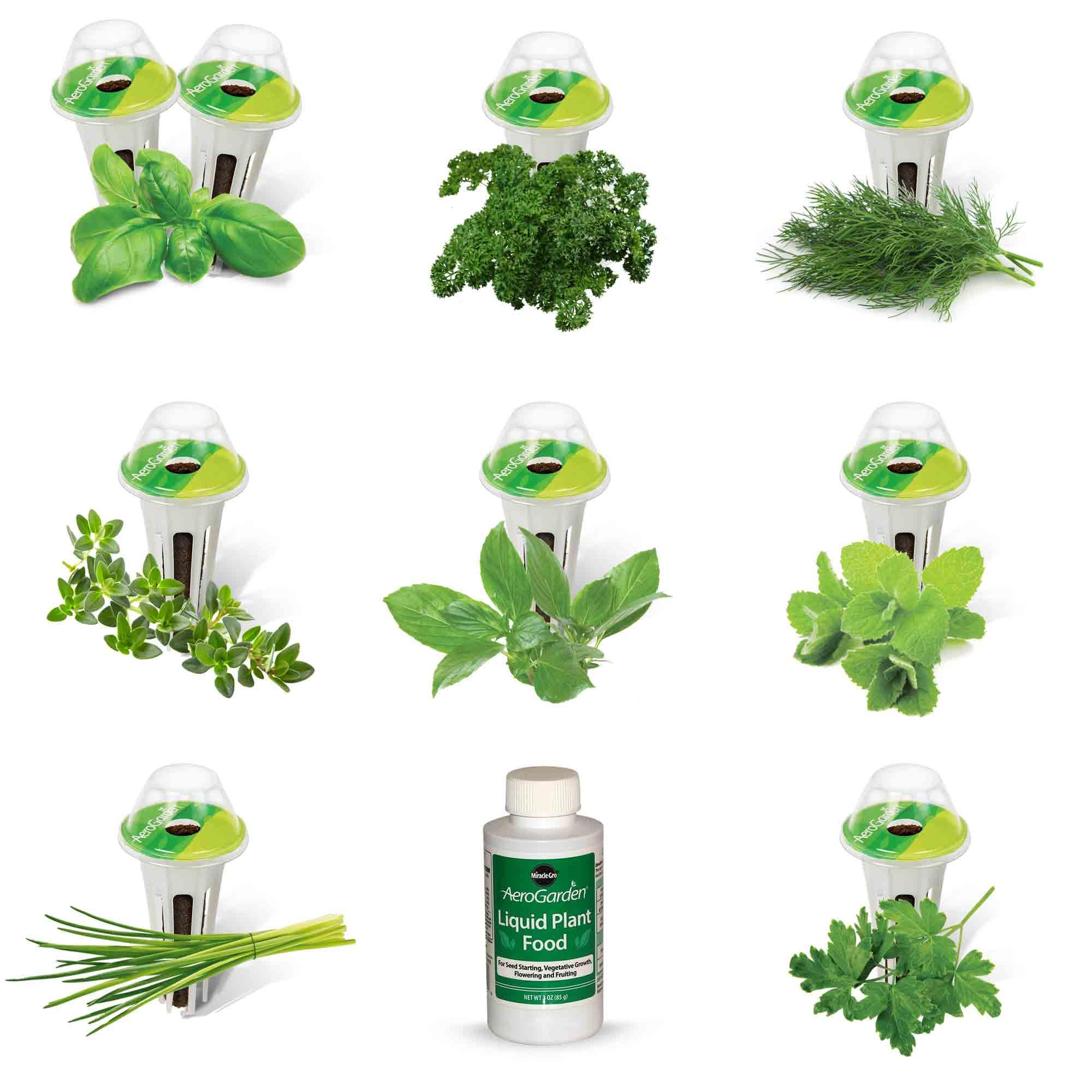 9-Pod Gourmet Herbs