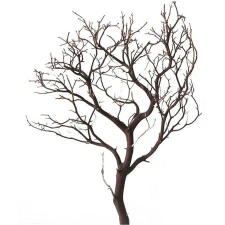 Manzanita Branches (Natural Manzanita Branch, 18