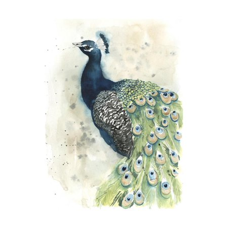 Watercolor Peacock Portrait II Birds, Animals Print Wall Art By Grace -