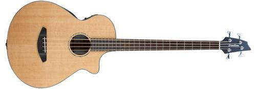 Breedlove Solo Acoustic-Electric Bass Guitar by