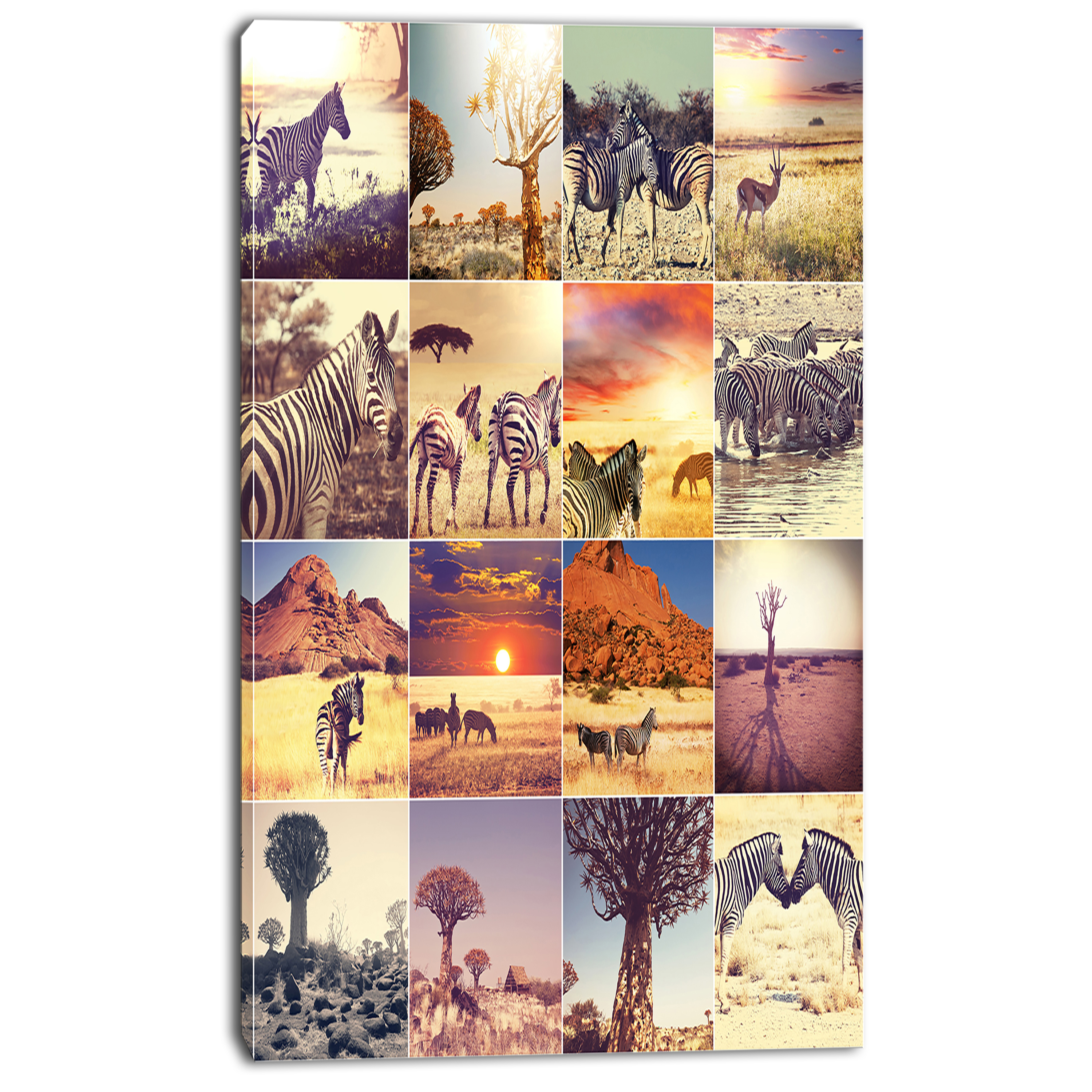 African Wildlife And Nature Collage