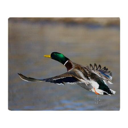 CafePress - Duck In Flight - Soft Fleece Throw Blanket, 50