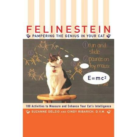 Felinestein : Pampering the Genius in Your