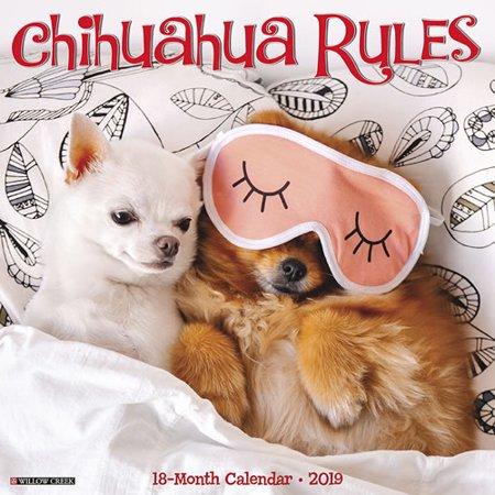 Willow Creek Press 2019 Chihuahua Rules Wall Calendar