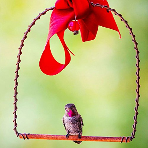 Copper Hummingbirds Swing Perfect For Nectar Feeder Hanger Stand Walmart Com Walmart Com
