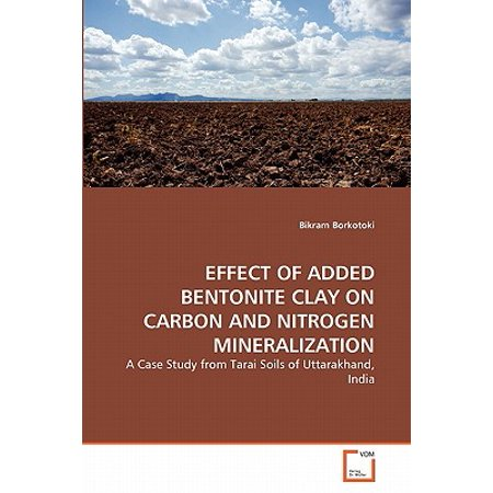 Effect of Added Bentonite Clay on Carbon and Nitrogen Mineralization